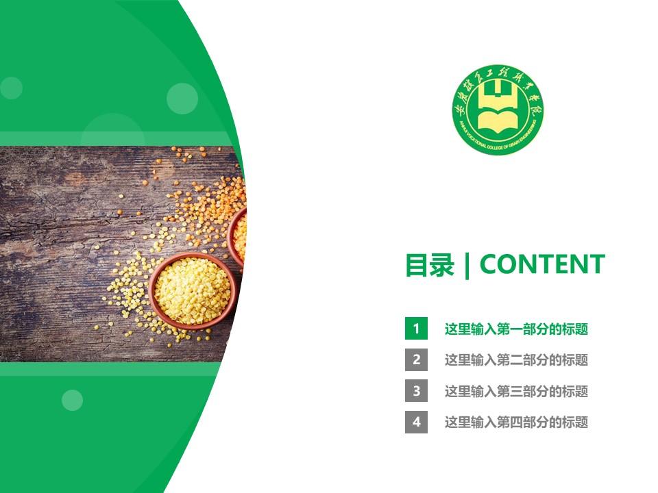 安徽粮食工程职业学院PPT模板下载_幻灯片预览图3
