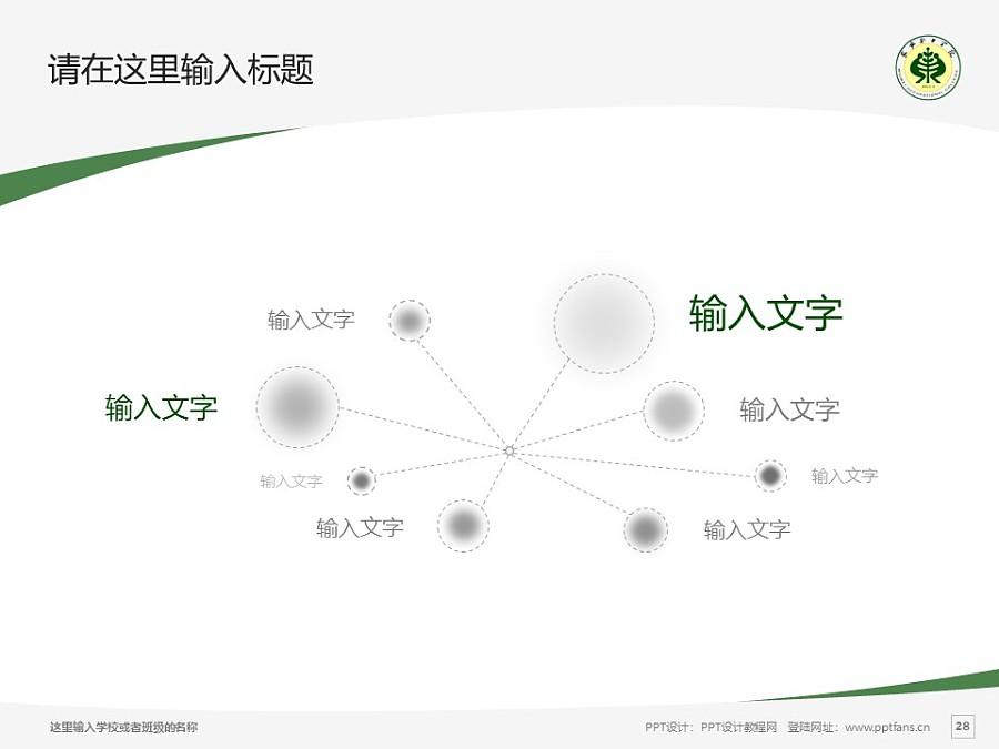 武威职业学院PPT模板下载_幻灯片预览图28