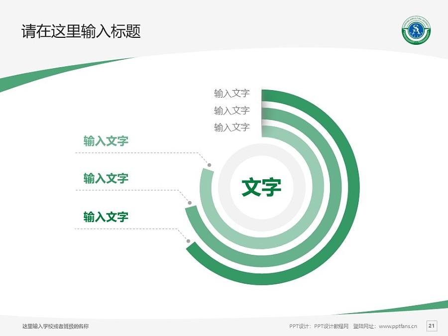 沈阳农业大学PPT模板下载_幻灯片预览图21