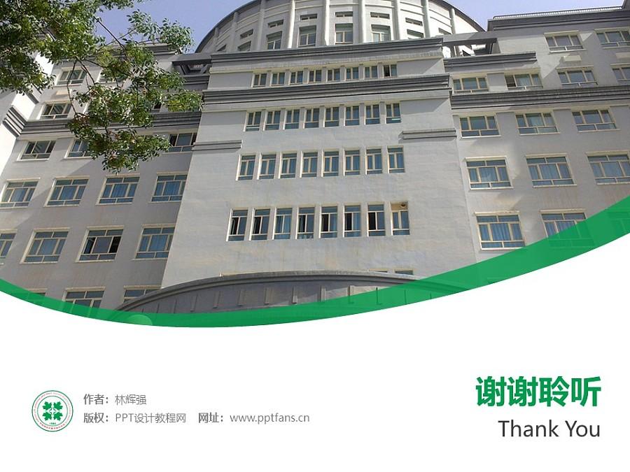 新疆维吾尔医学专科学校PPT模板下载_幻灯片预览图32