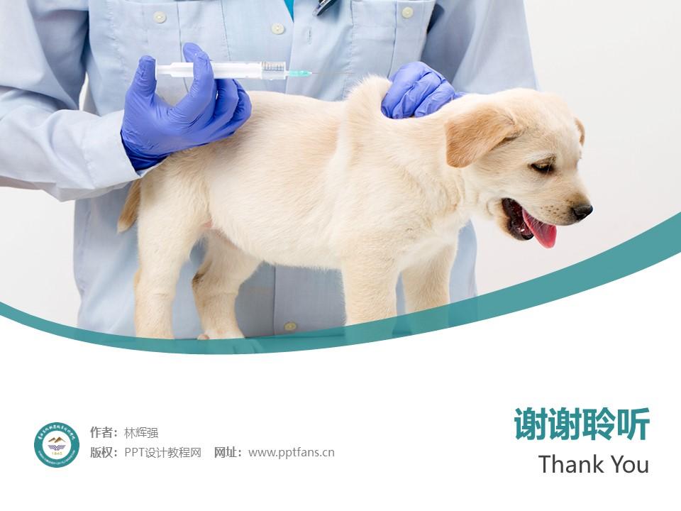 青海畜牧兽医职业技术学院PPT模板下载_幻灯片预览图32