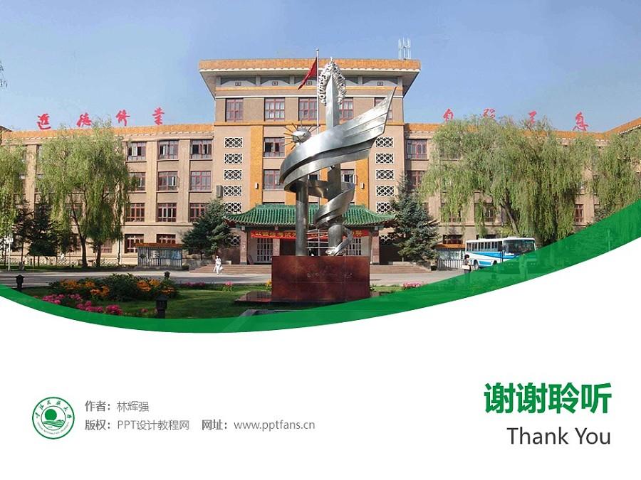 青海民族大学PPT模板下载_幻灯片预览图32