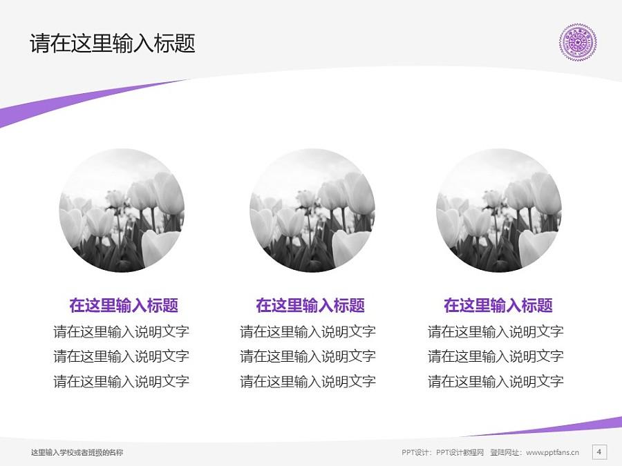 台湾清华大学/国立清华大学PPT模板下载_幻灯片预览图4