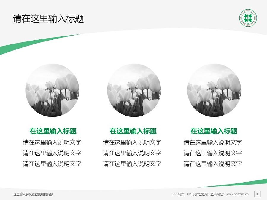 新疆维吾尔医学专科学校PPT模板下载_幻灯片预览图4