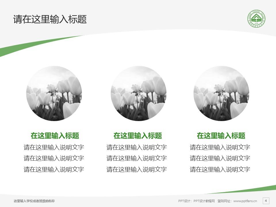 抚顺师范高等专科学校PPT模板下载_幻灯片预览图4