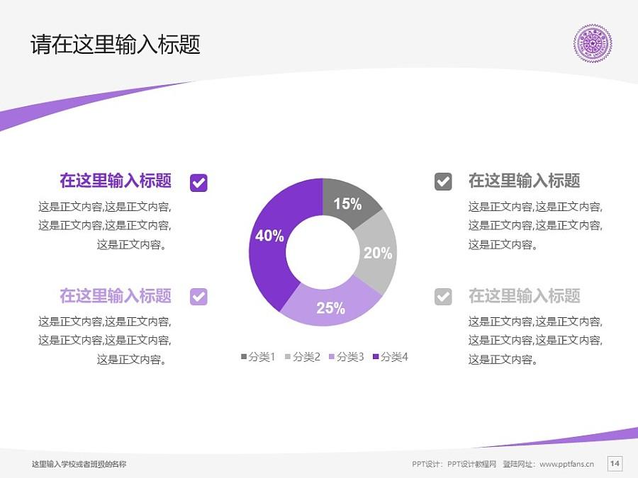 台湾清华大学/国立清华大学PPT模板下载_幻灯片预览图14