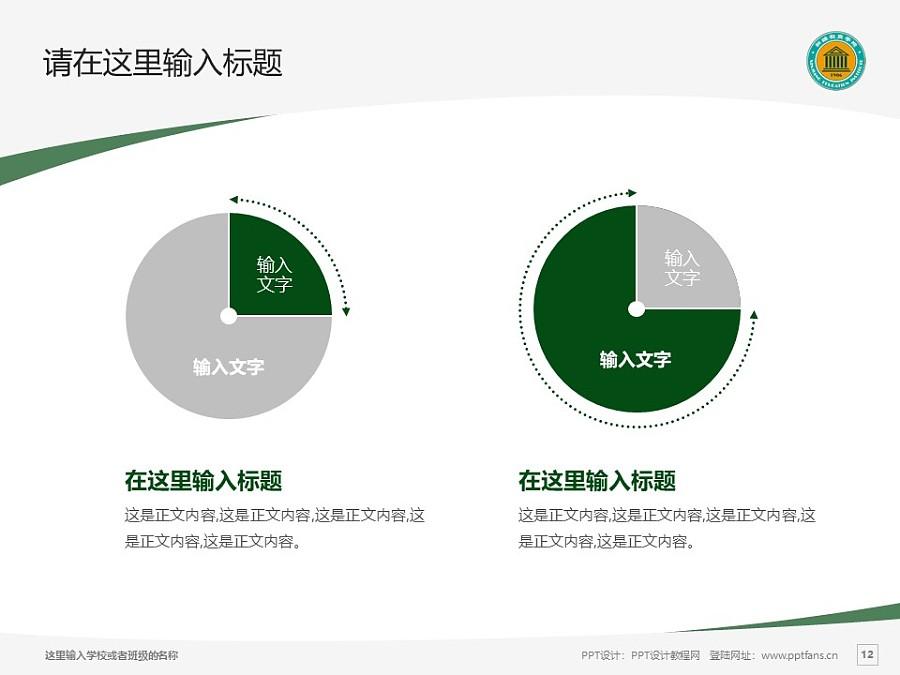 新疆师范高等专科学校PPT模板下载_幻灯片预览图12