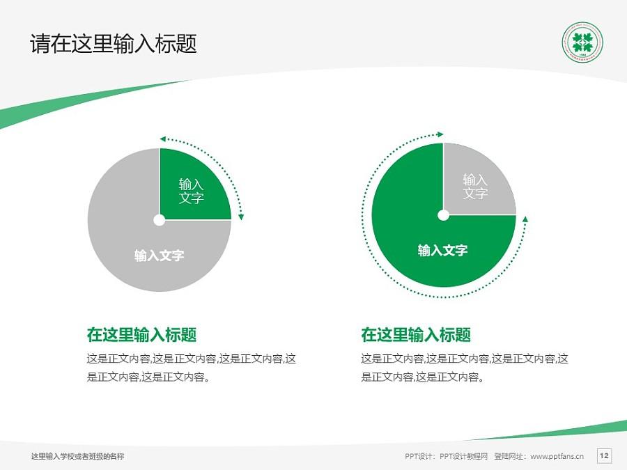 新疆维吾尔医学专科学校PPT模板下载_幻灯片预览图12