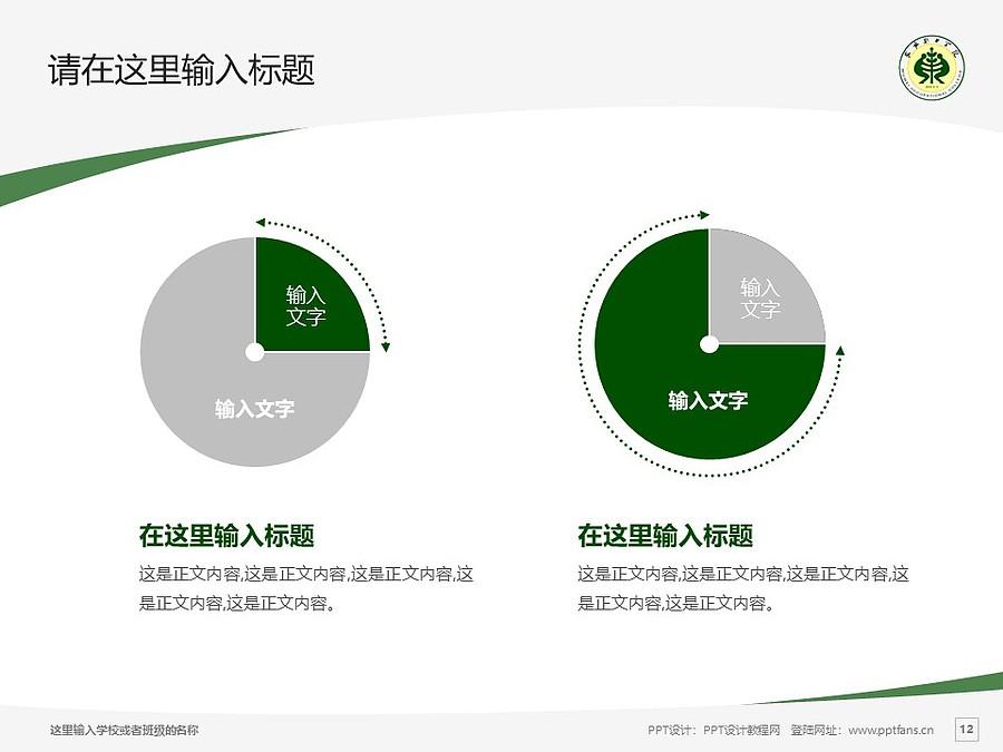武威职业学院PPT模板下载_幻灯片预览图12