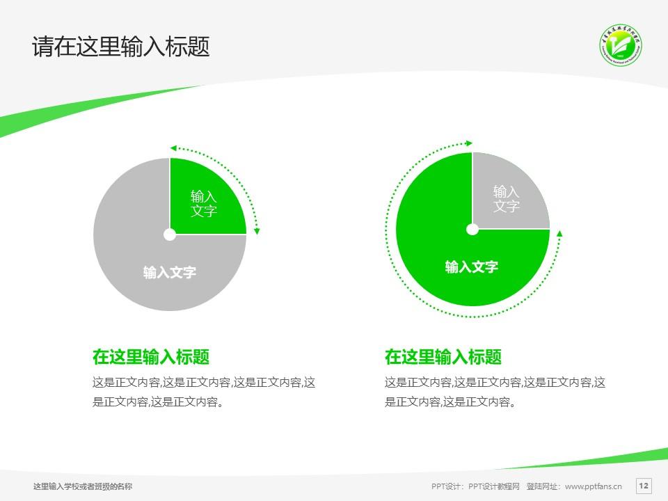 辽宁铁道职业技术学院PPT模板下载_幻灯片预览图12