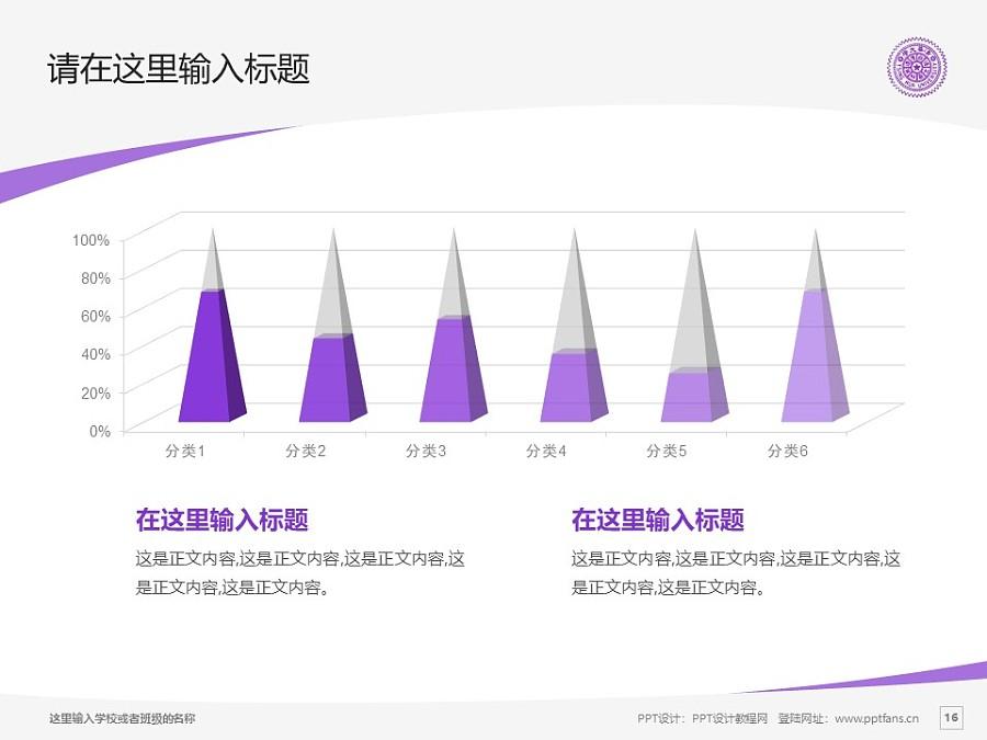 台湾清华大学/国立清华大学PPT模板下载_幻灯片预览图16