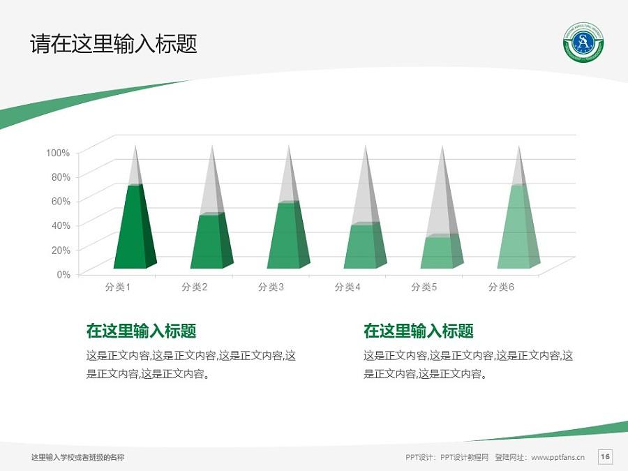 沈阳农业大学PPT模板下载_幻灯片预览图16