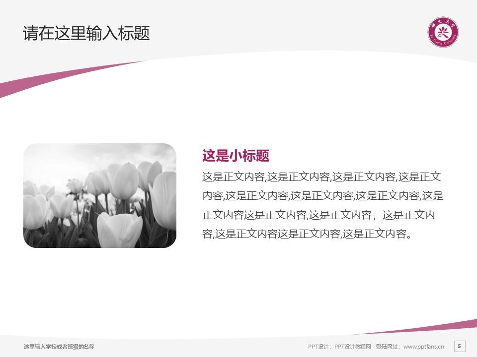 台湾佛光大学PPT模板下载_幻灯片预览图5