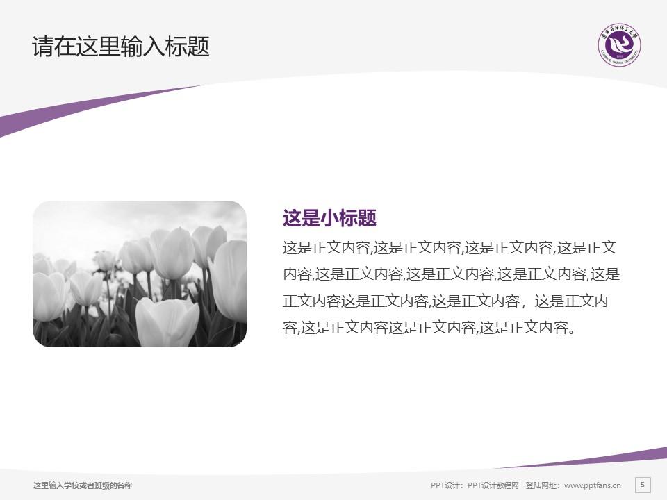 辽宁石油化工大学PPT模板下载_幻灯片预览图5