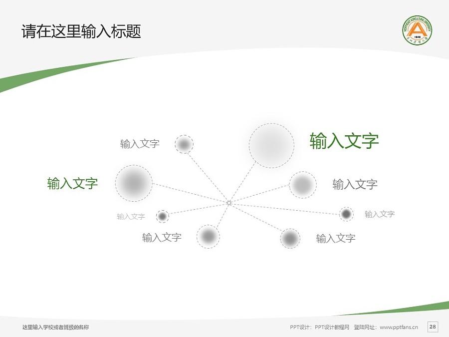 东北农业大学PPT模板下载_幻灯片预览图27