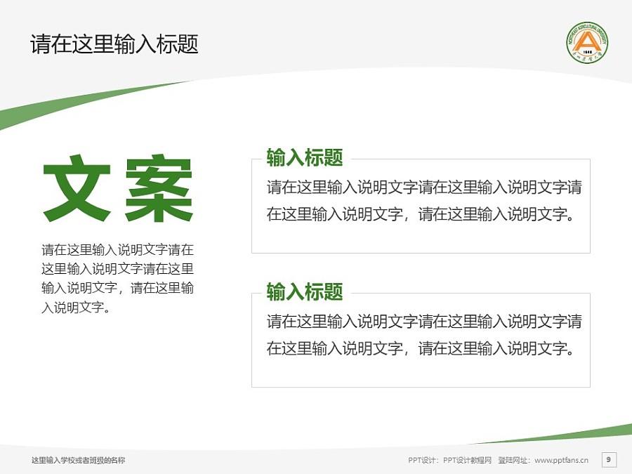 东北农业大学PPT模板下载_幻灯片预览图9