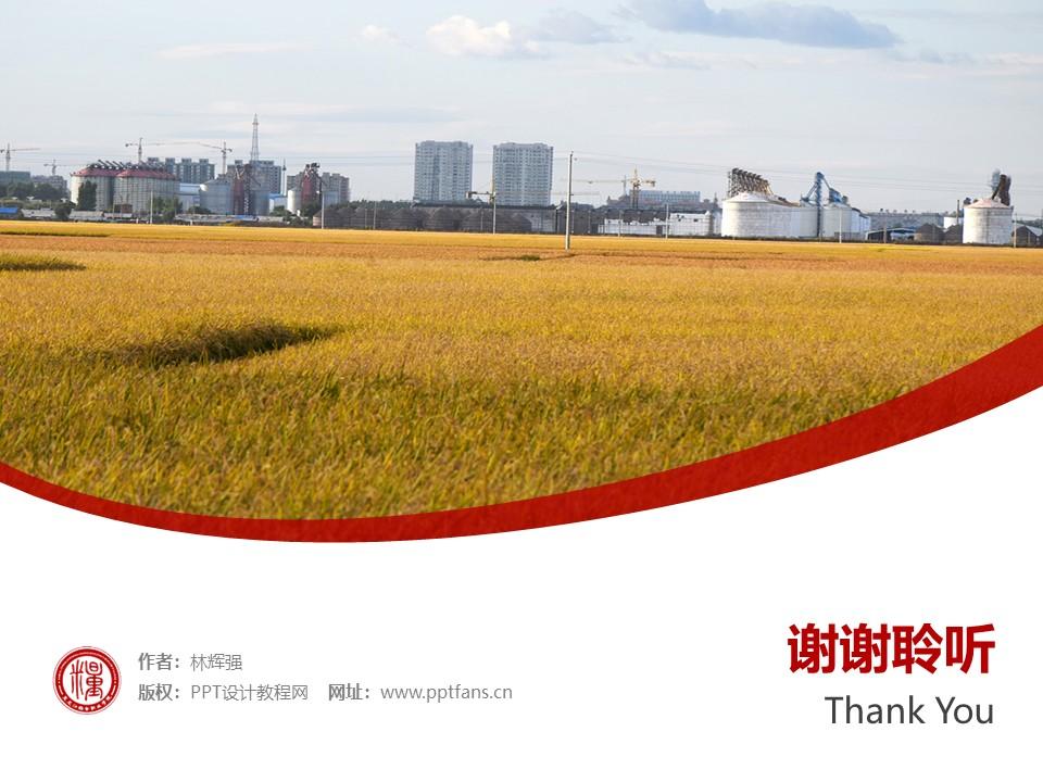 黑龙江粮食职业学院PPT模板下载_幻灯片预览图32