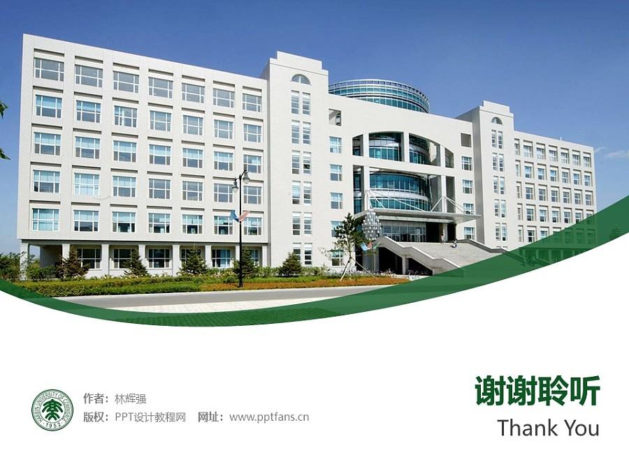 哈尔滨商业大学PPT模板下载_幻灯片预览图32