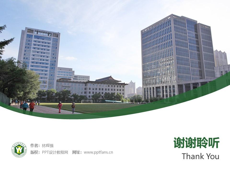 黑龙江大学PPT模板下载_幻灯片预览图32