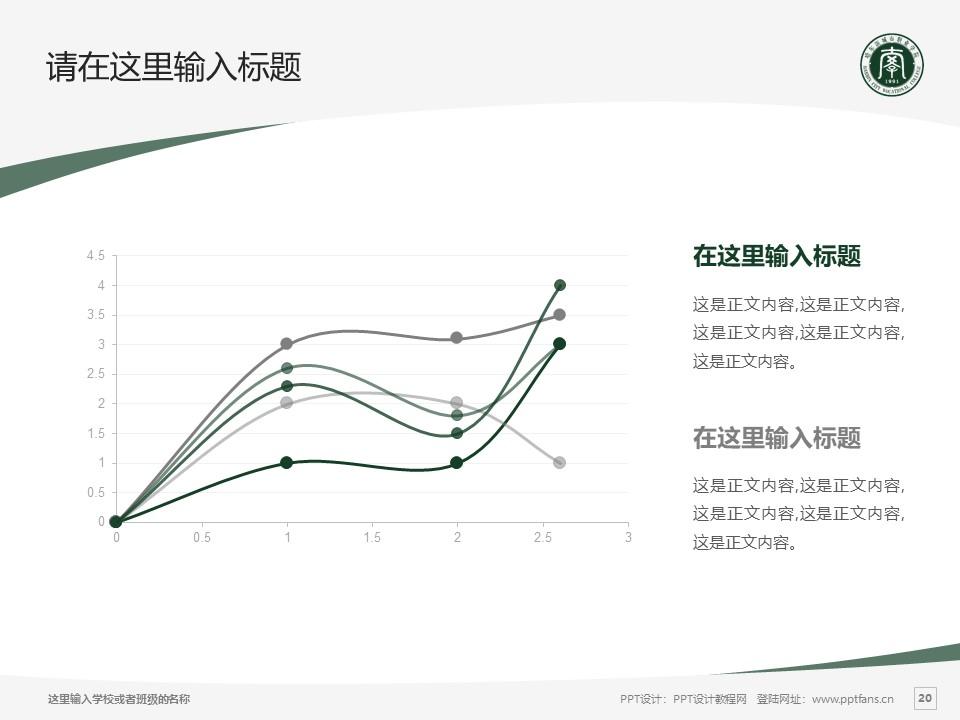 哈尔滨城市职业学院PPT模板下载_幻灯片预览图20