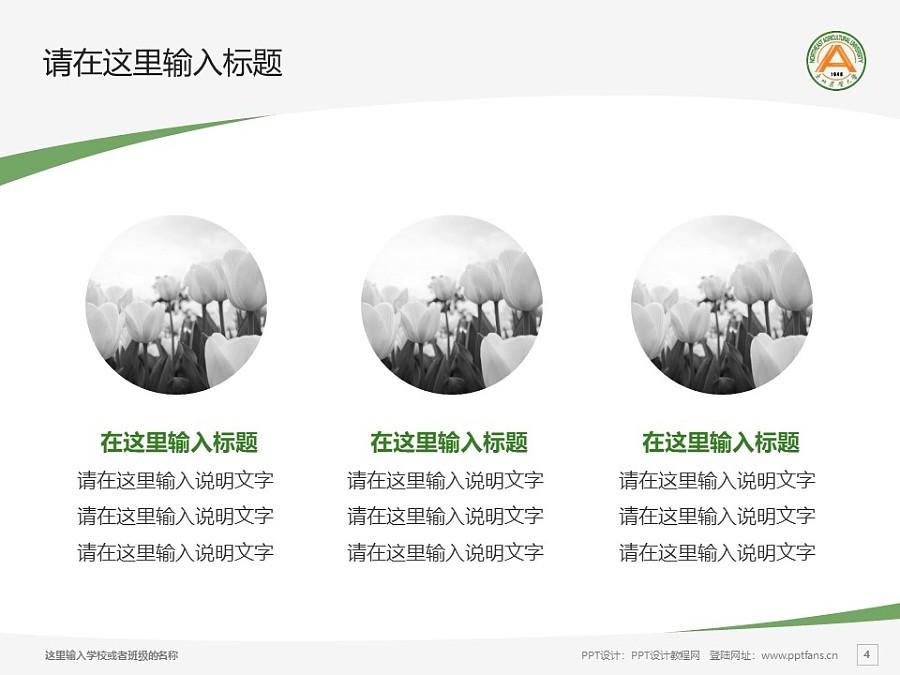 东北农业大学PPT模板下载_幻灯片预览图4