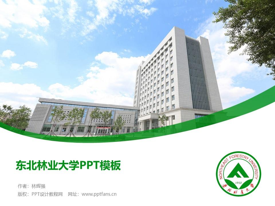 东北林业大学PPT模板下载_幻灯片预览图1