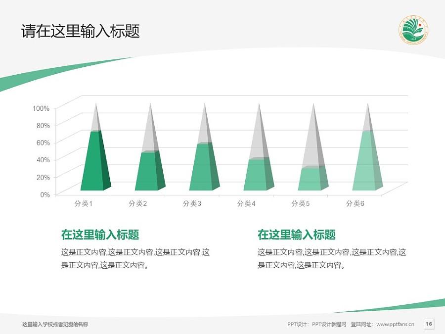 大庆师范学院PPT模板下载_幻灯片预览图16
