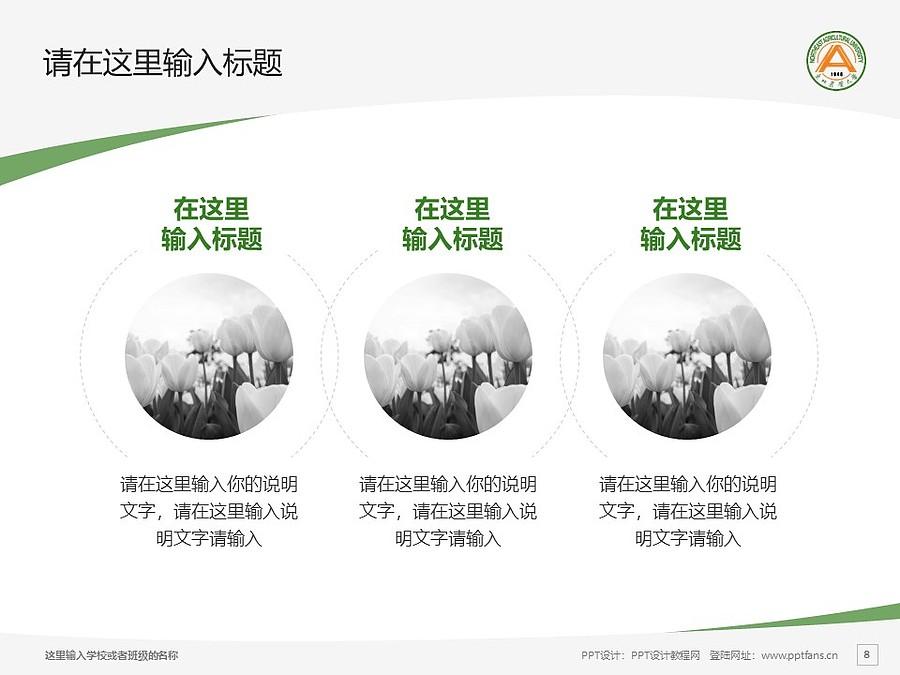 东北农业大学PPT模板下载_幻灯片预览图8