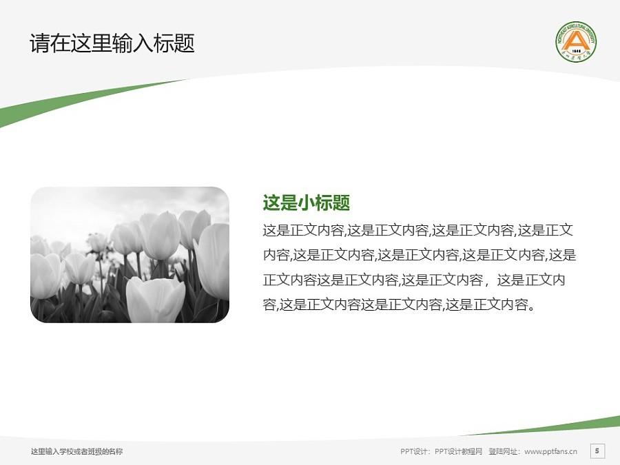 东北农业大学PPT模板下载_幻灯片预览图5