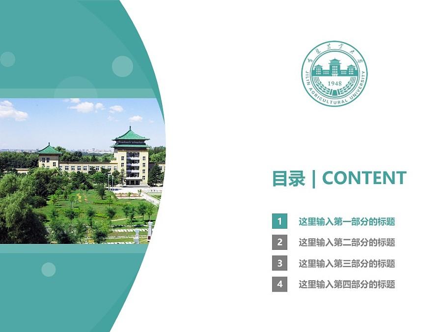 吉林农业大学PPT模板_幻灯片预览图3