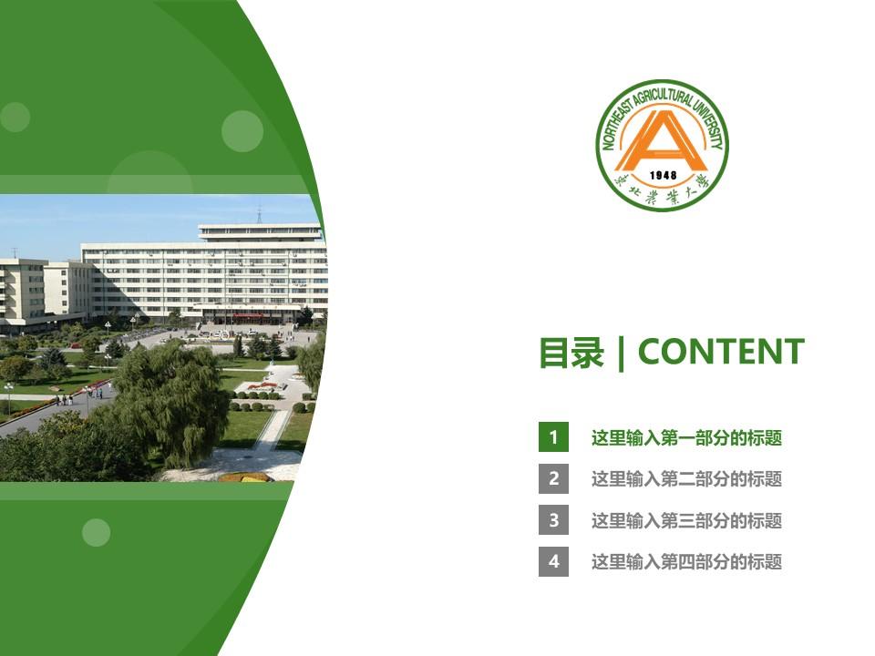 东北农业大学PPT模板下载_幻灯片预览图3