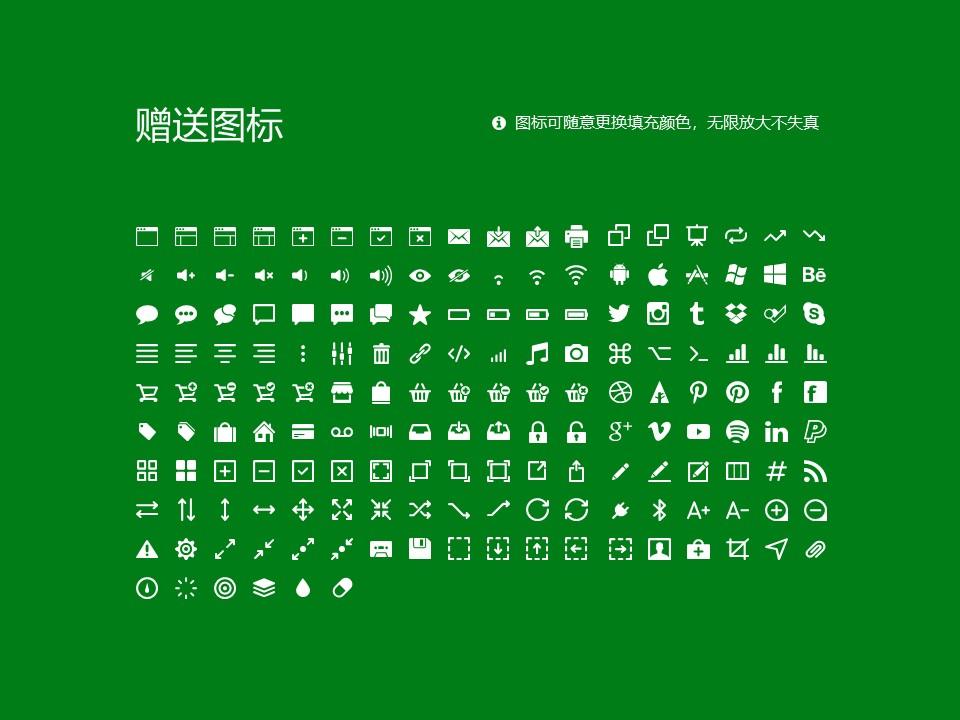 西安财经学院PPT模板下载_幻灯片预览图33