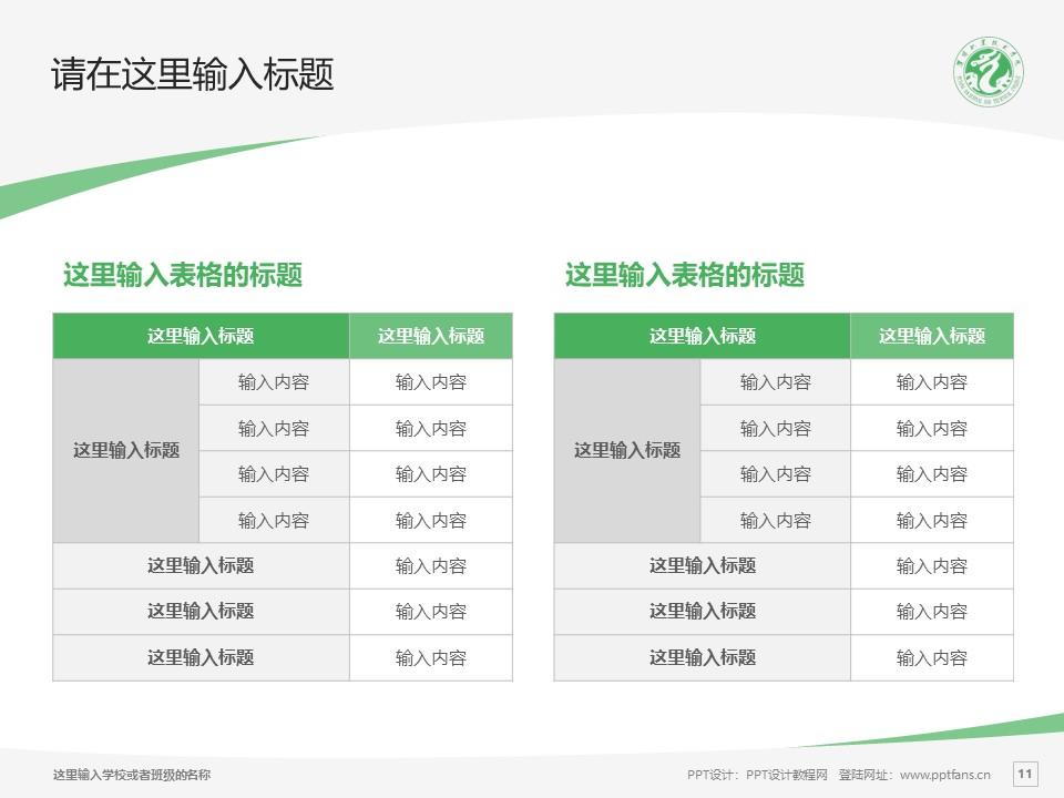 濮阳职业技术学院PPT模板下载_幻灯片预览图11