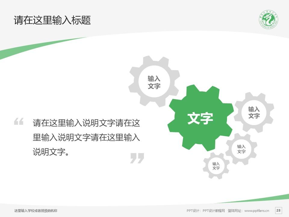 濮阳职业技术学院PPT模板下载_幻灯片预览图25