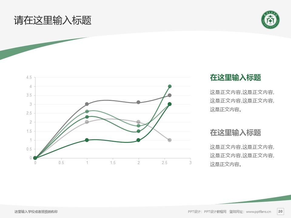 武汉长江工商学院PPT模板下载_幻灯片预览图20