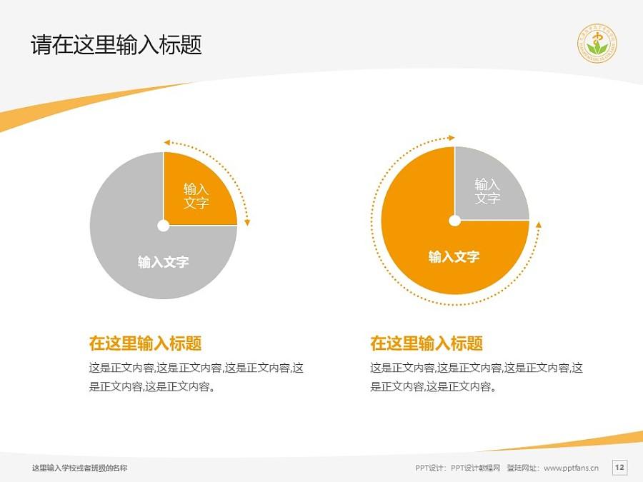 天津医学高等专科学校PPT模板下载_幻灯片预览图12