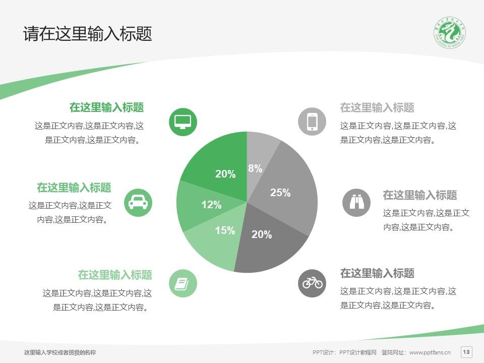 濮阳职业技术学院PPT模板下载_幻灯片预览图13