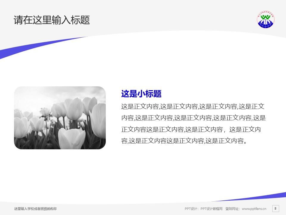 嵩山少林武术职业学院PPT模板下载_幻灯片预览图14