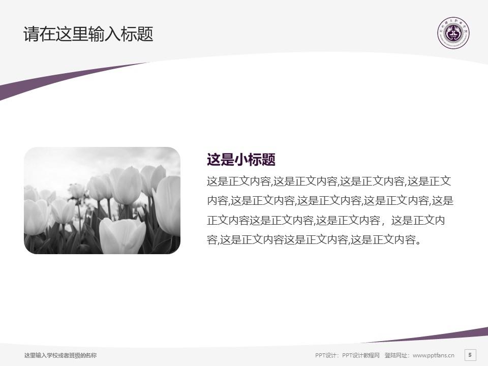 荆州理工职业学院PPT模板下载_幻灯片预览图5