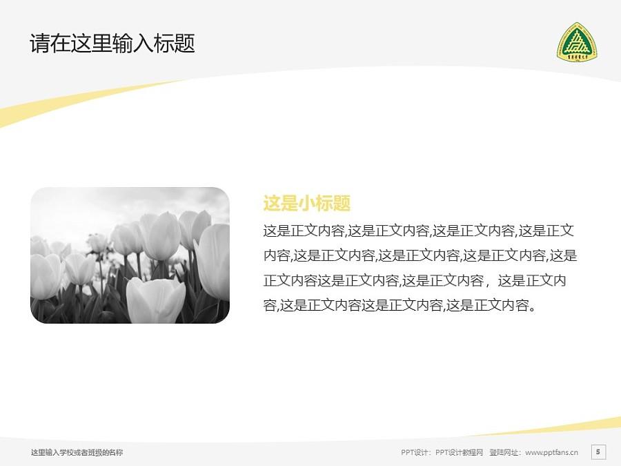 重庆邮电大学PPT模板_幻灯片预览图5