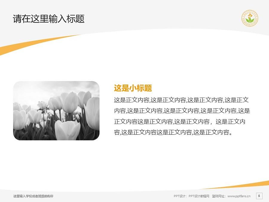天津医学高等专科学校PPT模板下载_幻灯片预览图5