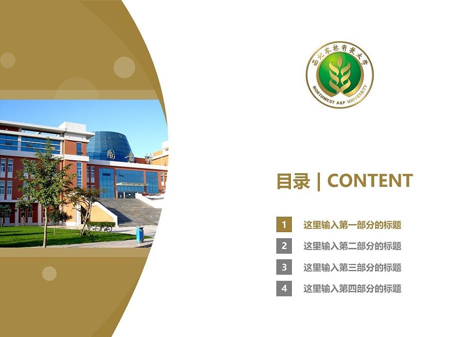 西北农林科技大学PPT模板下载_幻灯片预览图3