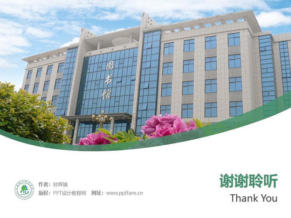 河南林业职业学院PPT模板下载_幻灯片预览图55