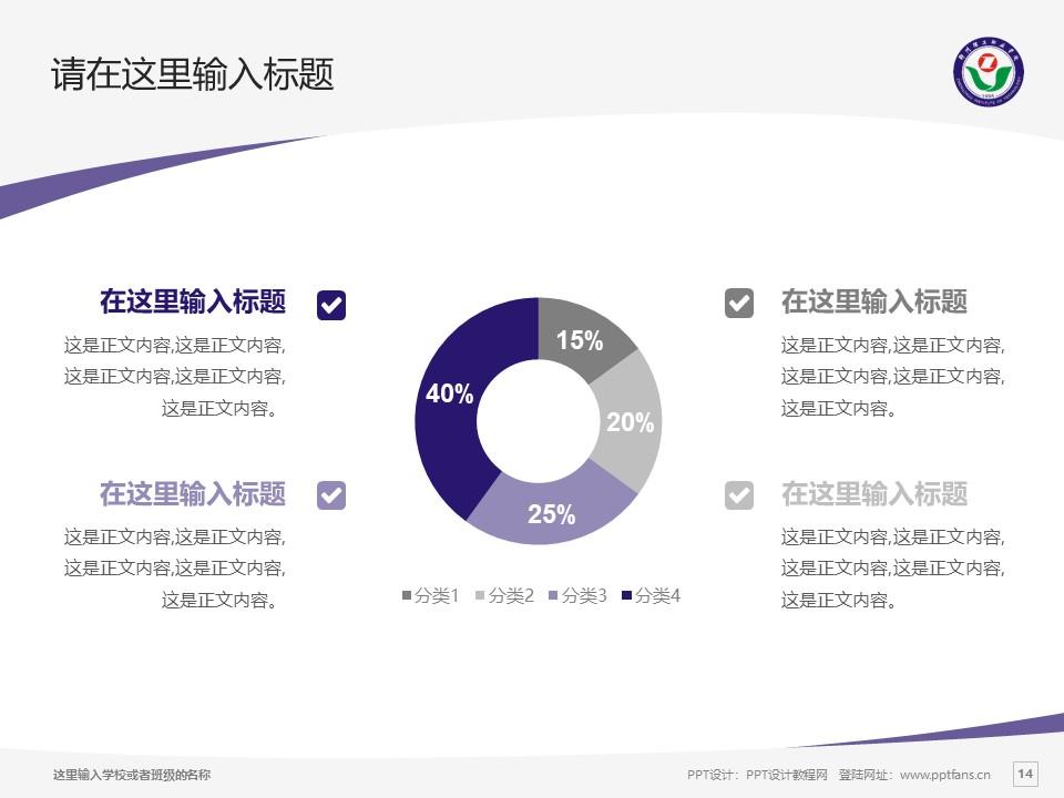 郑州理工职业学院PPT模板下载_幻灯片预览图14
