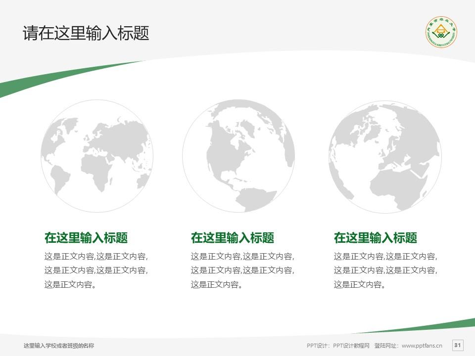 内蒙古农业大学PPT模板下载_幻灯片预览图31