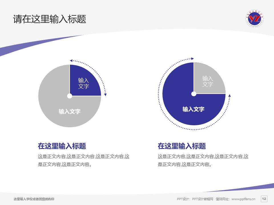益阳职业技术学院PPT模板下载_幻灯片预览图12