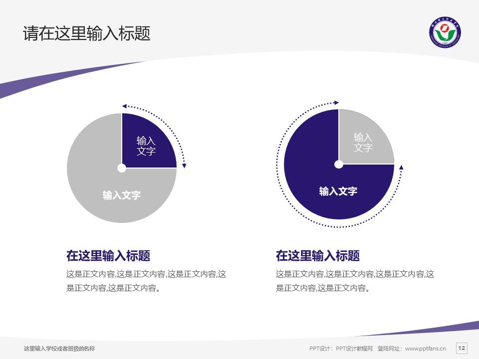 郑州理工职业学院PPT模板下载_幻灯片预览图12