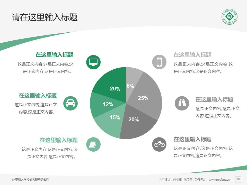 湖南食品药品职业学院PPT模板下载_幻灯片预览图13