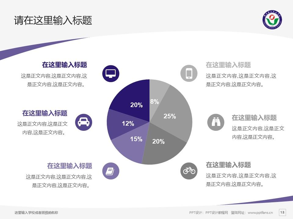 郑州理工职业学院PPT模板下载_幻灯片预览图13