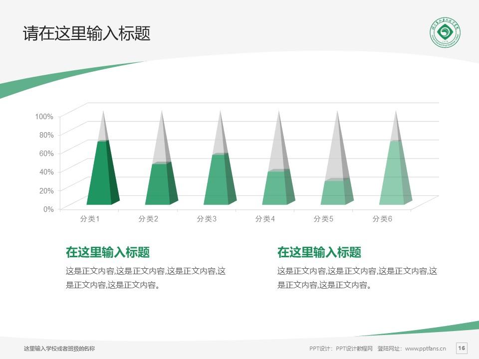 湖南食品药品职业学院PPT模板下载_幻灯片预览图16